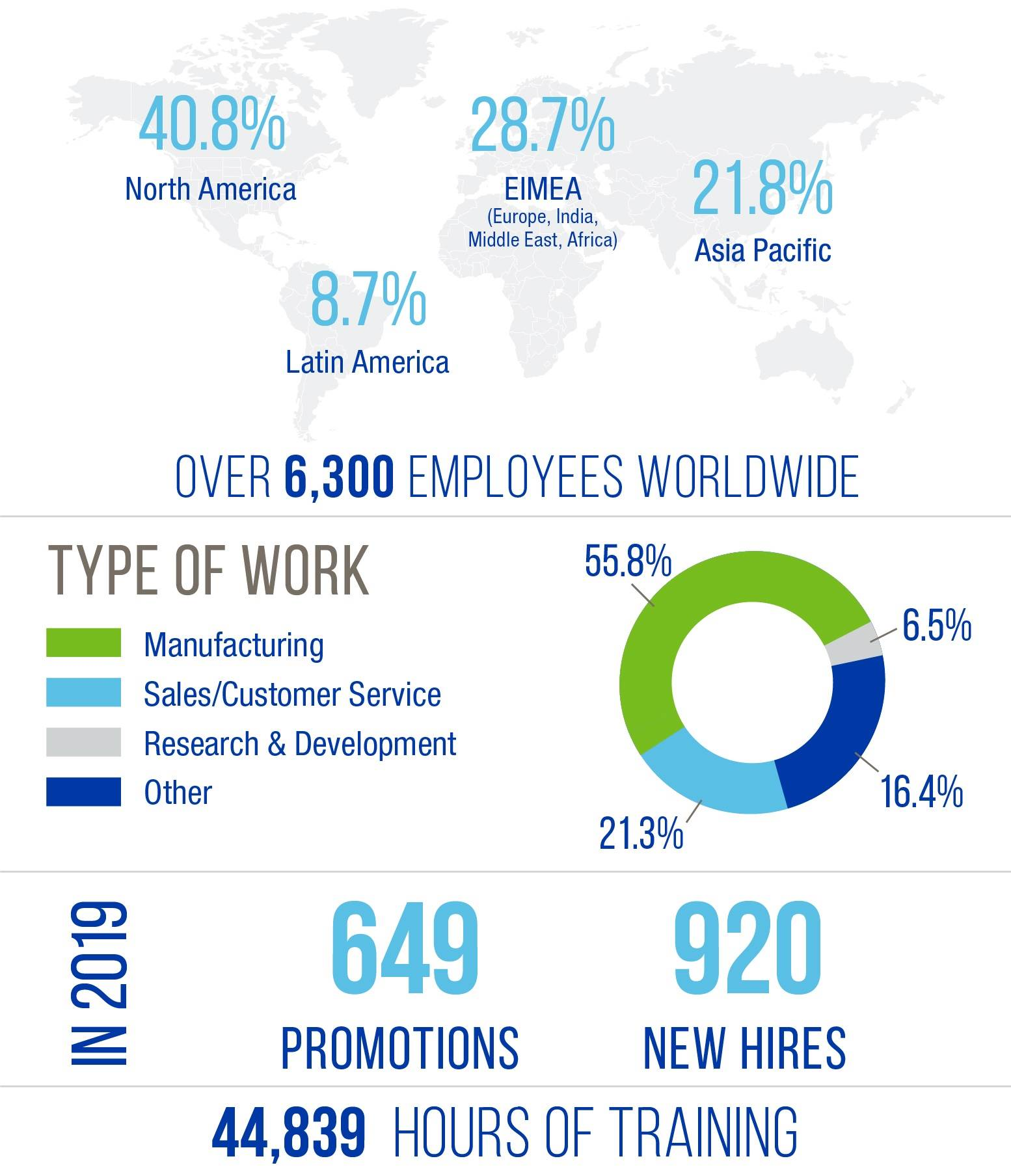 H.B. Fuller workforce infographic for 2019.