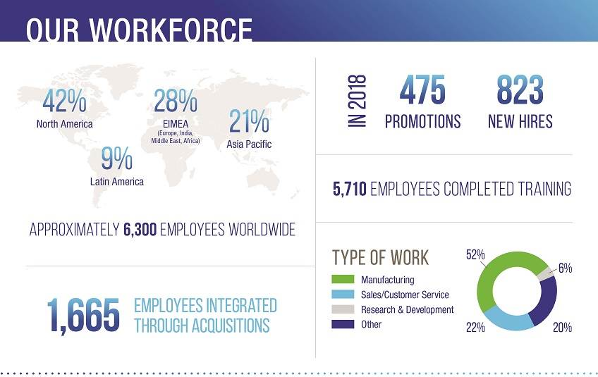 H.B. Fuller 2018 Workforce Graphic