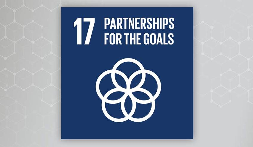Sustainability Development Goal 17