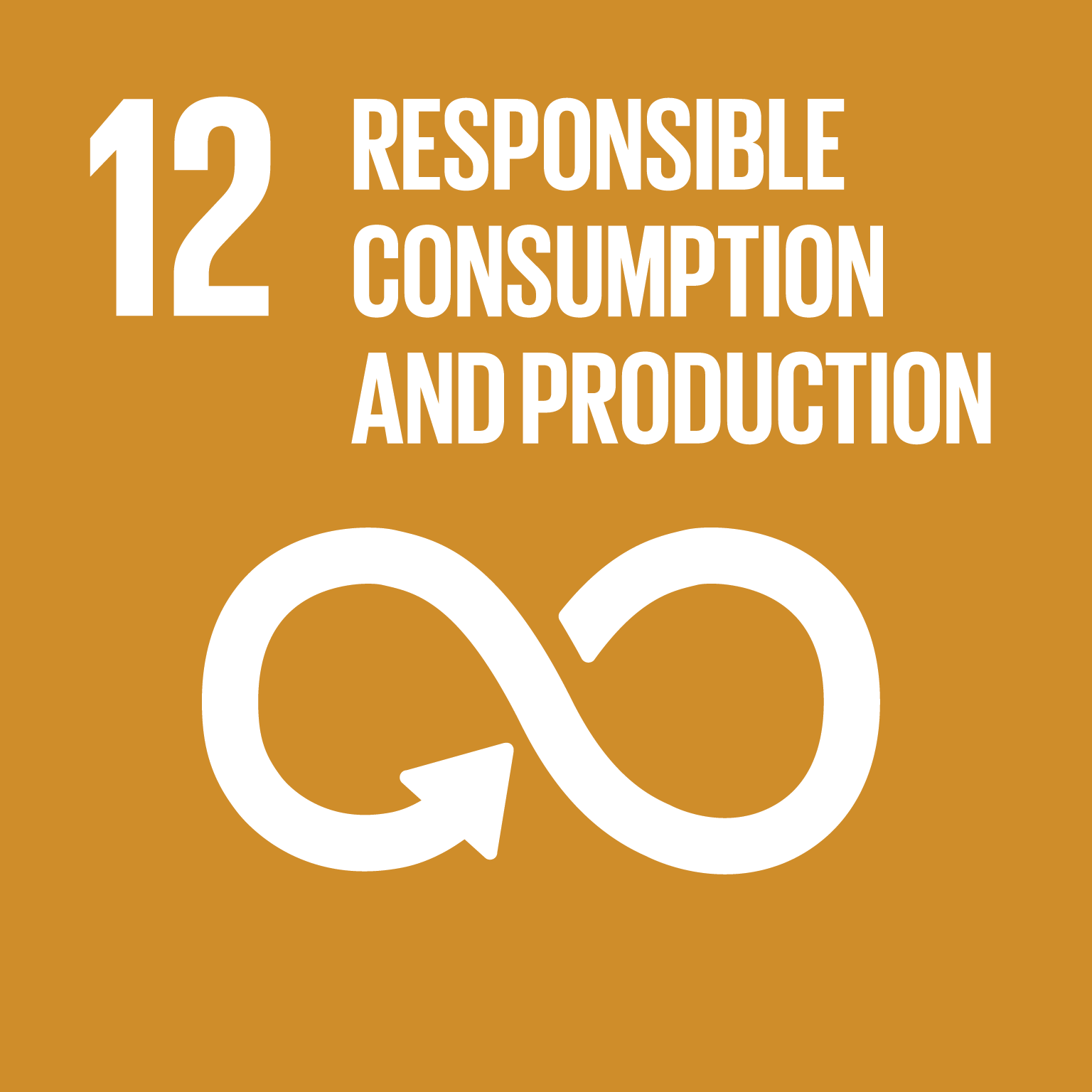 Sustainable Development Goal SDG 12 Responsible Consumption Production