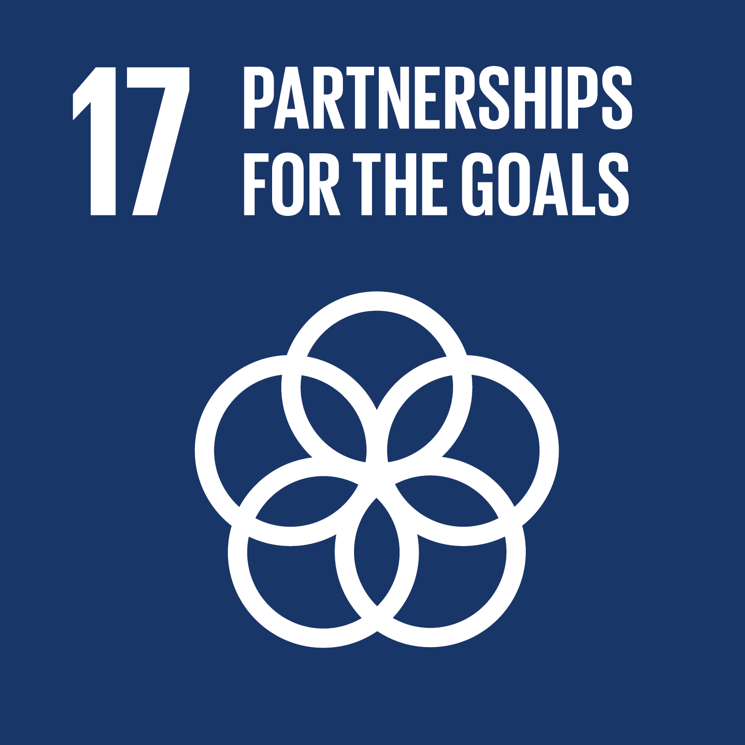 Sustainable Development Goal SDG 17 Partnership