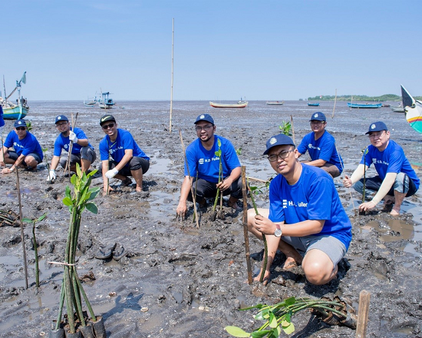 Indonesia Employees Planting