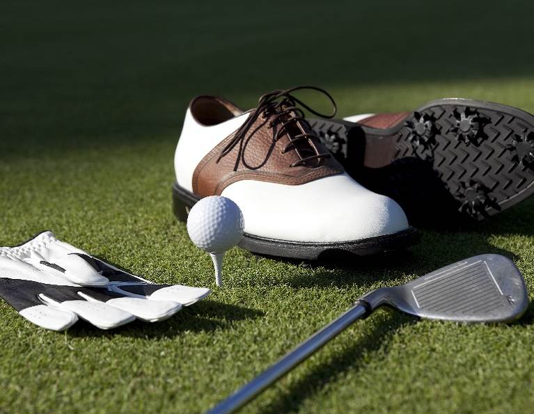 Golf glove, shoe, tee, and club.