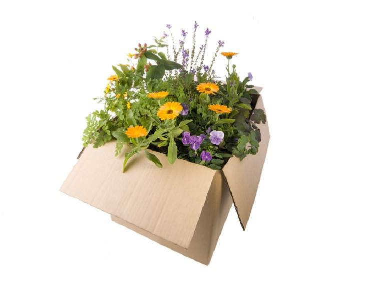 Moisture resistant packaging for bouquet delivery