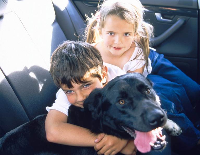 Kids hugging a dog in a vehicle
