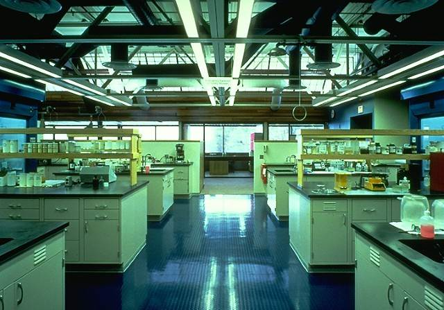 Inside H.B. Fuller's lab at the Willow Lake campus in Minnesota.
