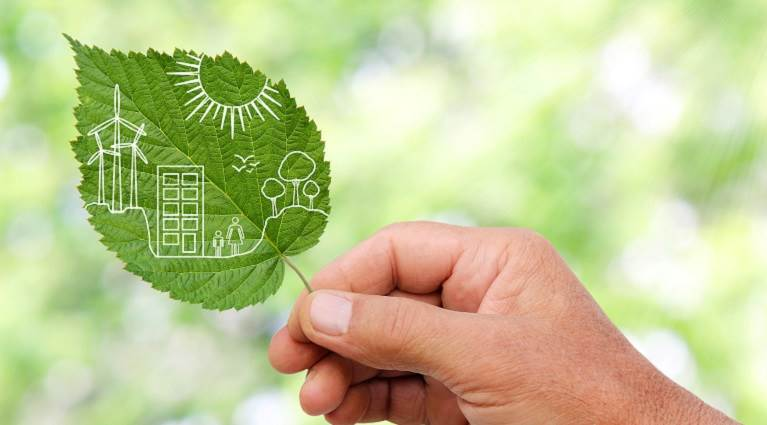 Hand holding a leaf representing packaging sustainability.